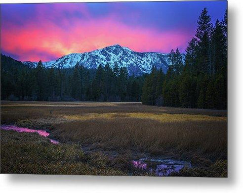 Winter Meadow By Brad Scott - Metal Print