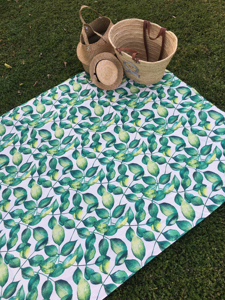 2m x 150cm XL Outdoor picnic mat, picnic rug, play mat, kids mat, large outdoor mat, beach, water resistant, picnic, summe