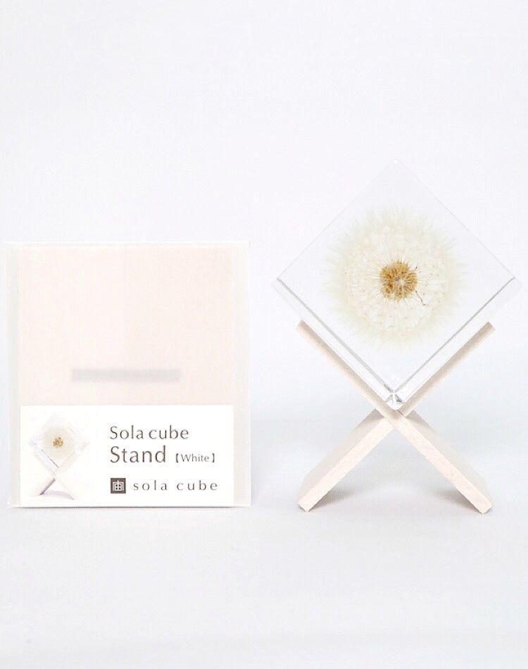 Sola Cube Stand(White)
