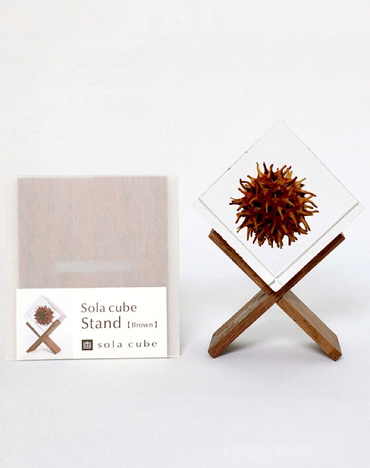 Sola Cube Stand(Brown)