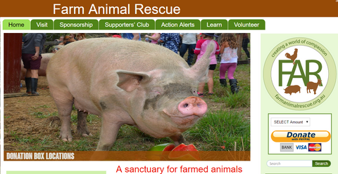 Farm Animal Rescue