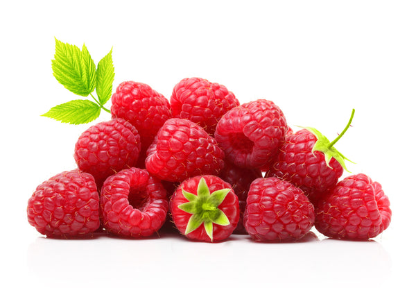 Berry Plants Combo Pack A-(Blueberry, Red Raspberry, Blackberry varieties for Hot-Warm Climate)