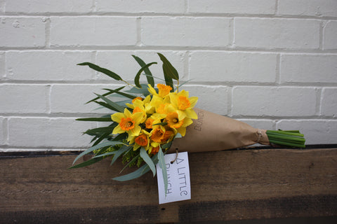daffodil day little posy bouquet by A Little Bunch Perth