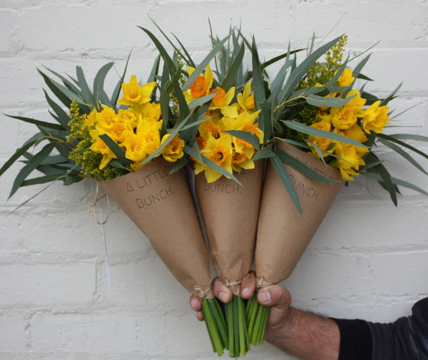 Pre Order A Little Bunch for Daffodil Day Friday 23rd August 2019