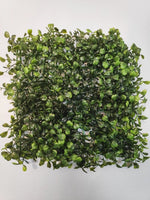 Boxwood Plant Panel