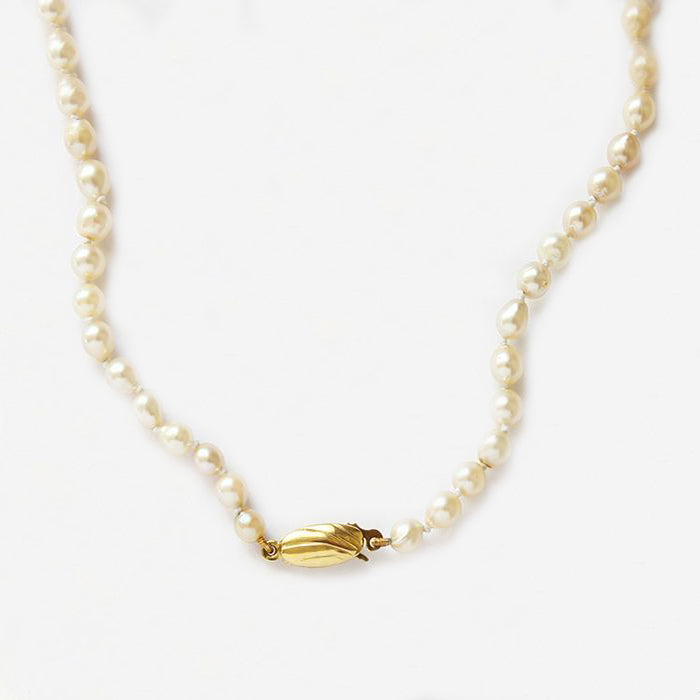 a single row of pearls with a oval gold clasp attached