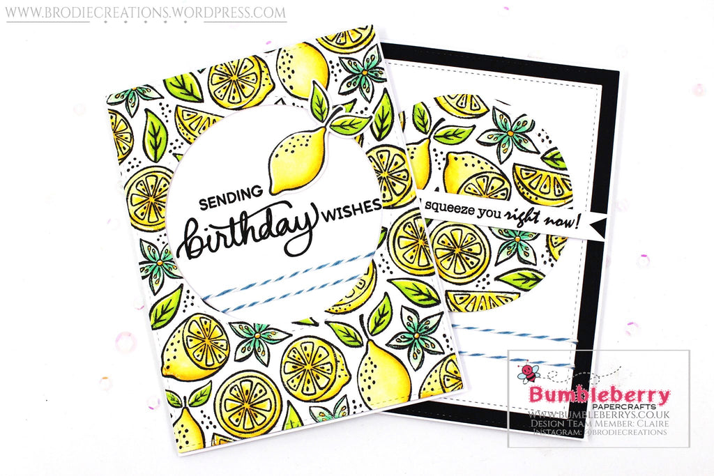 "Two Cards Using Hero Arts' ""Fresh Citrus"" Bold Prints Stamp!"