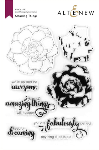 Amazing Things Stamp Set