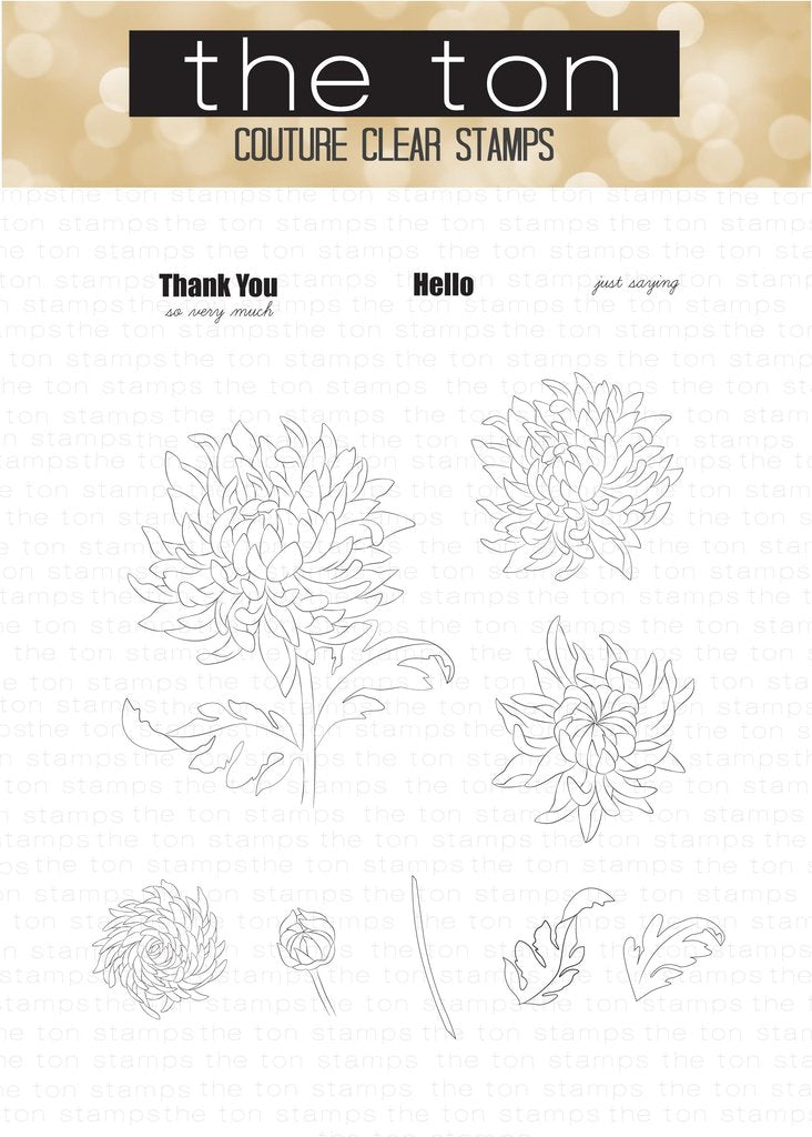 Thankful Chrysanthemum