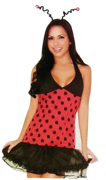 Sexy 3 Piece Ladybug Costume for Women