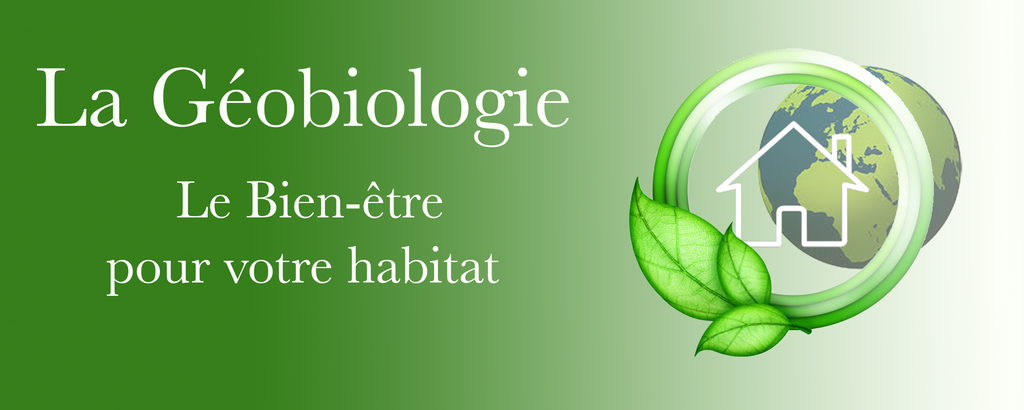 Formation Géobiologie en 3 modules