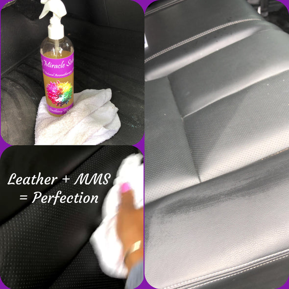 All Natural Eco-Friendly Car Cleaning Products, Oakville Ontario