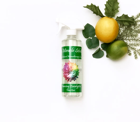 All Natural Household Cleaners, Oakville