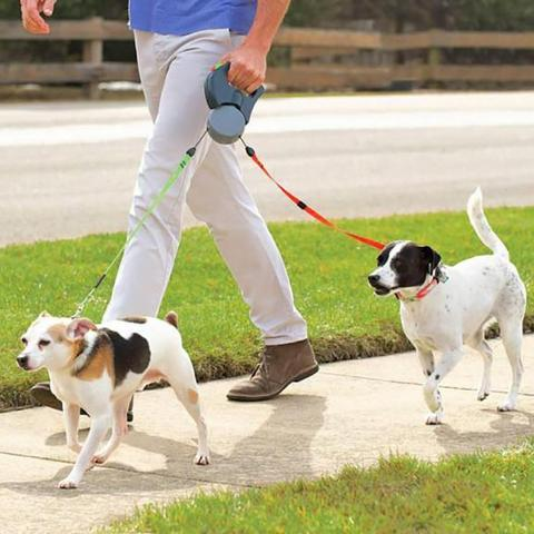 2 IN 1 Dog Leash - FeelLifeStore