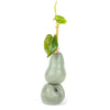 Come Out To The Coast - Pear And Apple Vase