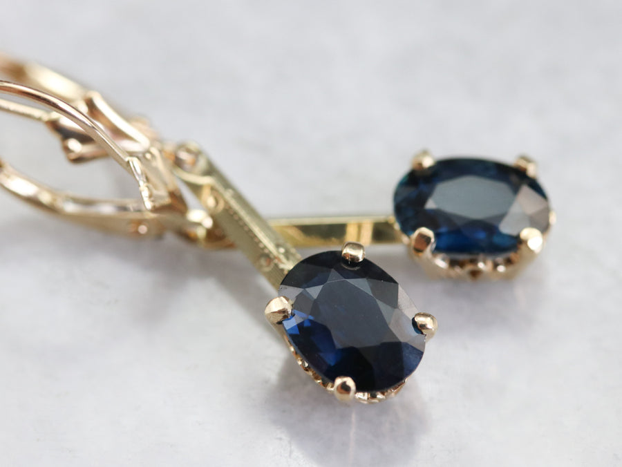Pretty Sapphire Drop Earrings