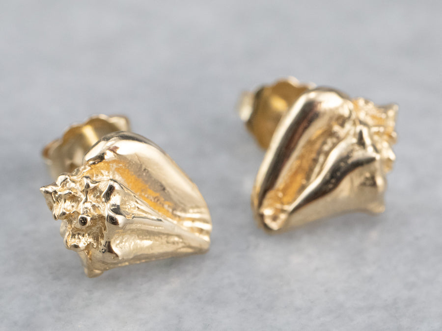 Golden Conch Shell Stud Earrings