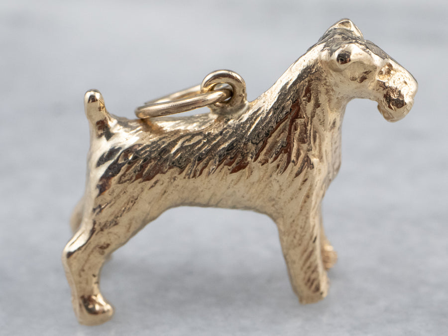 Gold Schnauzer Terrier Dog Charm