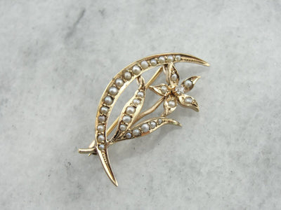 Art Nouveau Era Seed Pearl and Diamond Lilly and Crescent Moon Brooch