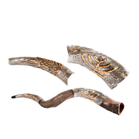 Silver Plated Yemenite Kudu Shofar - Menorah, Olive Leaf