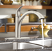 Moen 7545 Camerist Pullout Kitchen Faucet - NYDIRECT