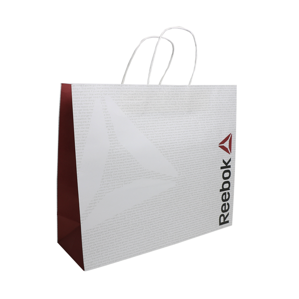 WHITE KRAFT PAPER CARRY BAG WITH TWIST HANDLES