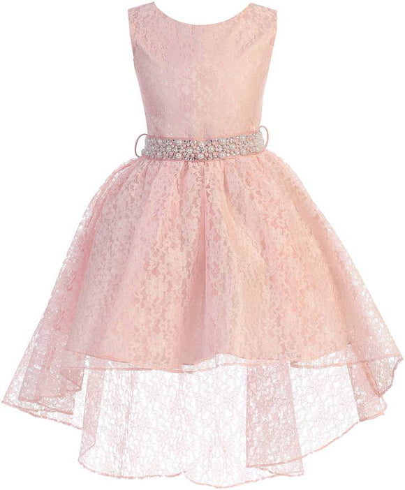 1ec4bc8cf1cb Little Girls Sleeveless Floral Lace Rhinestone High low Party Flower Girl  Dress - Dreamerpepi