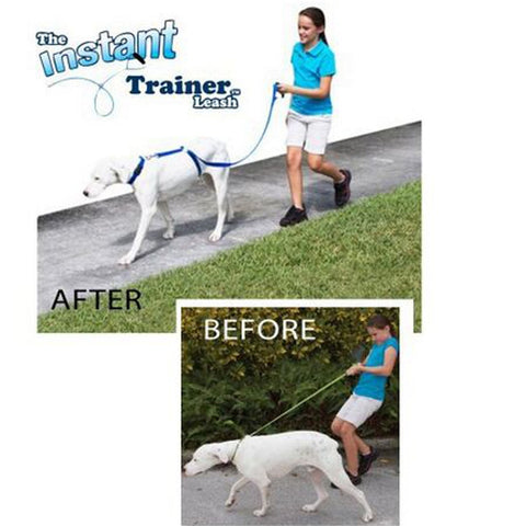 Instant Trainer Dog Leash that Trains Dogs