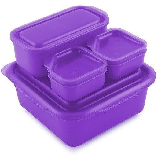 Goodbyn food container Purple Goodbyn Portions on the Go Food Container (5 Colours)