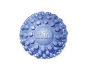 PRO-TEC HEATABLE ACUBALL MINI