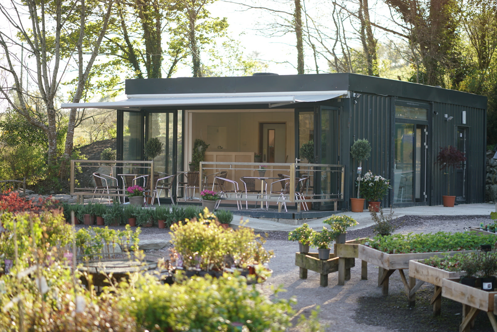 The Coffee Bee cafe at Future Forests is surrounded by stunning plants and trees lit by evening light.