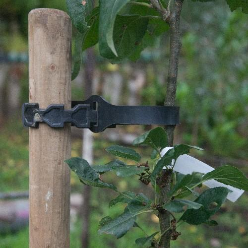 Tree Tie - Rubber Self Tie 60cm - Future Forests