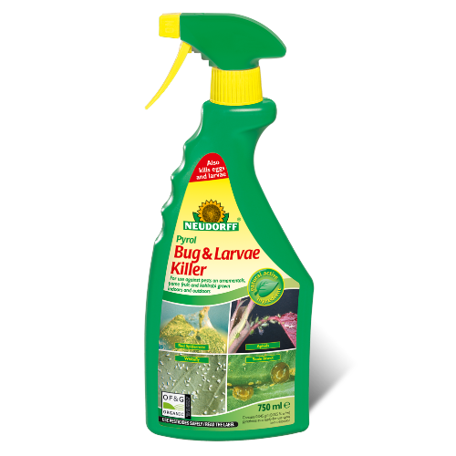 Neudorff Pyrol Bug & Larvae Killer - Future Forests