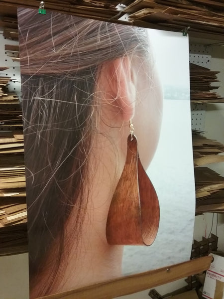 Lipine Koa Earrings