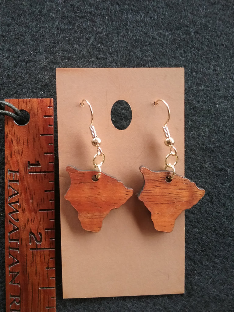 Hawaii Island Li'i Koa Wood Earrings - Hawaii Bookmark