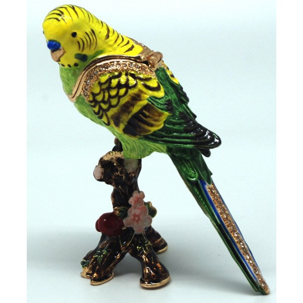 Budgie- green