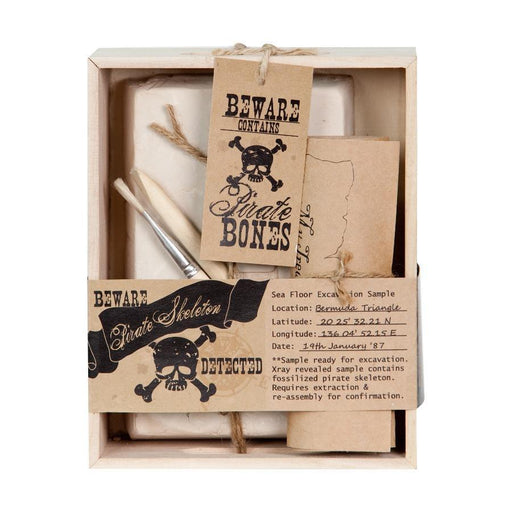 The Pirate Skeleton Excavation Kit - TOYTAG