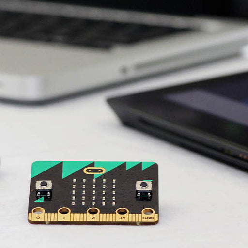Light Up Your World with Microbit