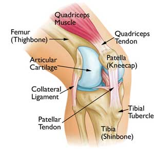 Image showing left knee pain and right knee pain