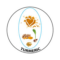 Turmeric capsules available from Active650 joint health experts