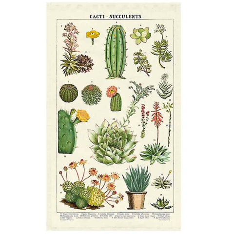 Vintage succulents tea towel