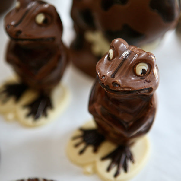 Chocolate Making Course Frog Mould