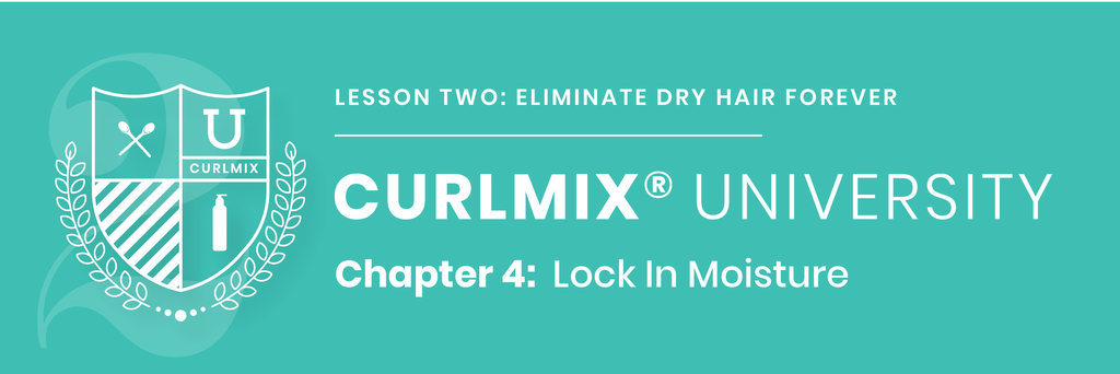 CurlMix University - Lesson 2 - Chapter 4 Lock-In Moisture