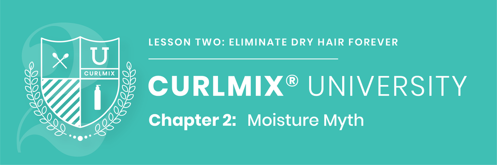 CurlMix University - Lesson 2 - Chapter 2 - Moisture Myth