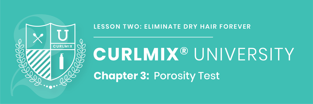 CurlMix University - Lesson 2 - Chapter 3 - Porosity