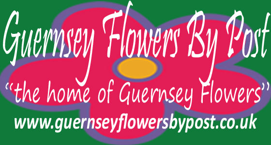 Guernsey Flowers by Post