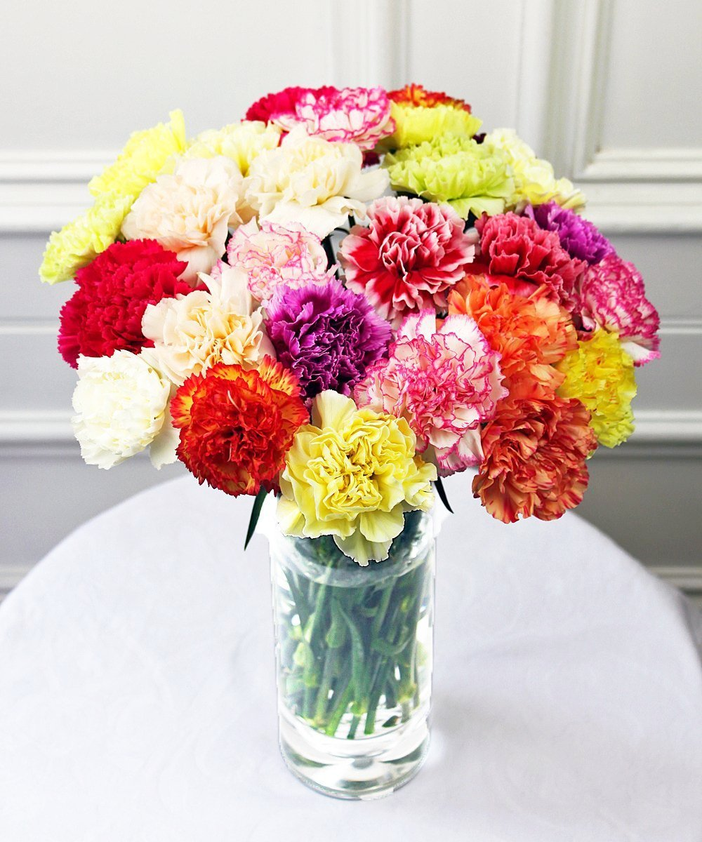 Mixed Carnations - Fineflora Flowers