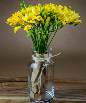 "Luxury Long Stem ""Easter"" Yellow Freesias - Fineflora Flowers"