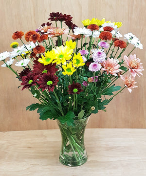 Mixed Chrysanthemum Bouquet