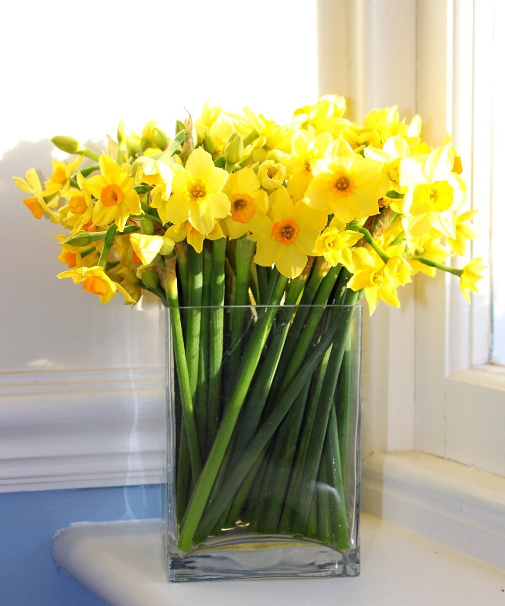 Scented Narcissi - Fineflora Flowers
